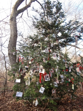 Memorial Tree for Beloved Pets